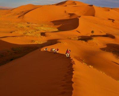 Excursión al sur de Marruecos y sus desiertos - 5 días